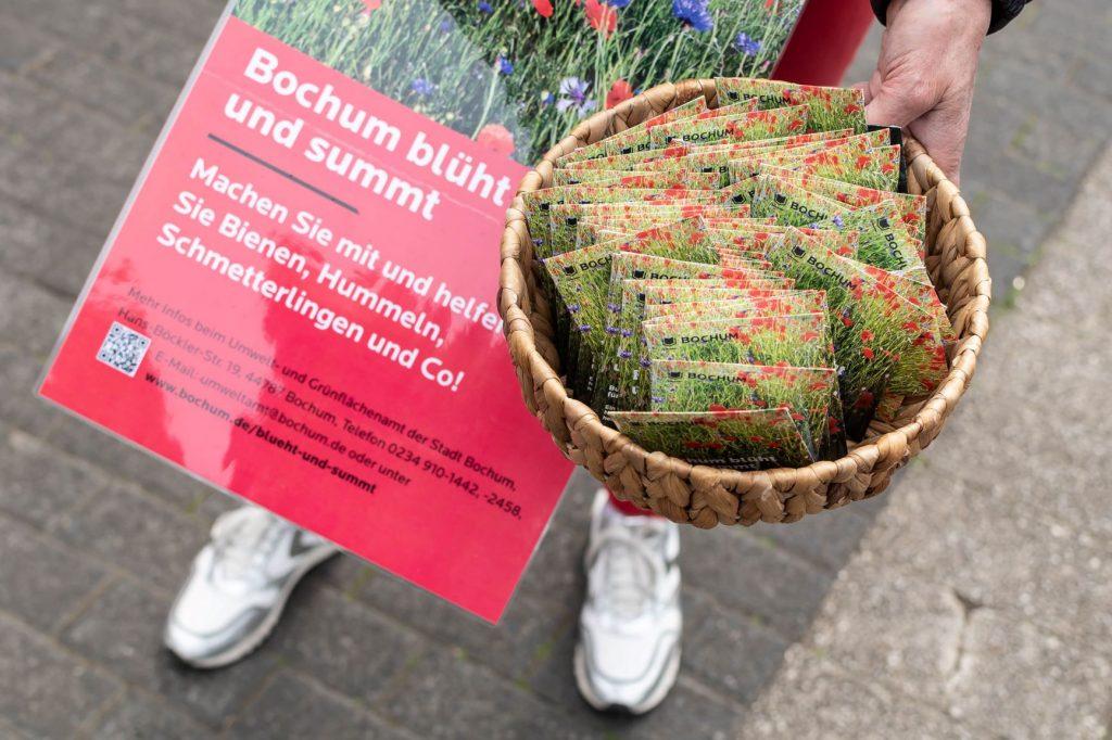 """Kampagne """"Bochum blüht und summt"""" läuft 2020 weiter"""